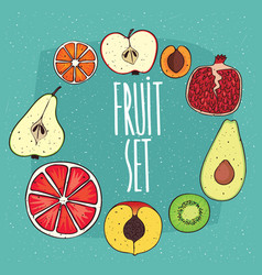 Set of isolated fruits in cross sections vector