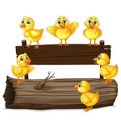 Wooden sign with six chicks vector