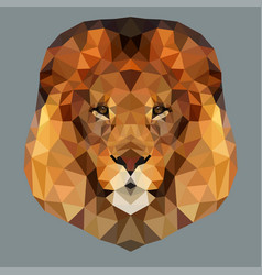 lion head low vector image