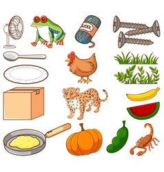 Large set different food and other items on vector