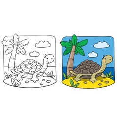 Little turtle coloring book vector image