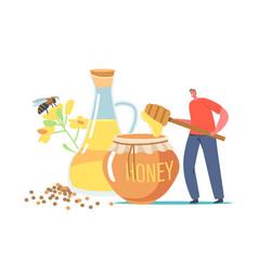 organic natural food tiny beekeeper character vector image