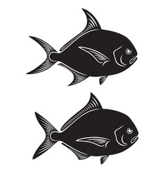 Pomfret fish vector