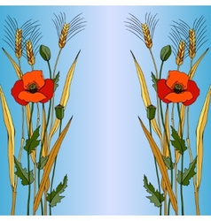 Red poppy in blue style vector image