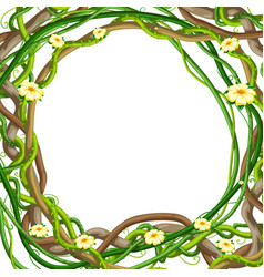Twisted wild lianas branches frame jungle vines vector