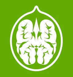 Walnut icon green vector