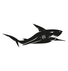 vintage black shark vector image