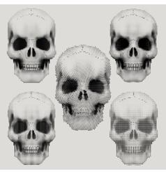 Human skulls in vintage halftone style vector image vector image