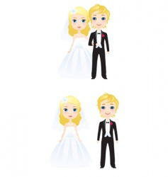 the bride and groom vector image