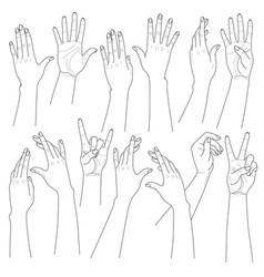 woman hands set vector image