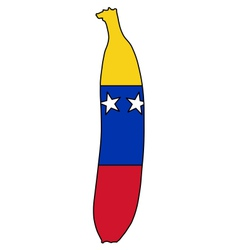 Banana of venezuela vector