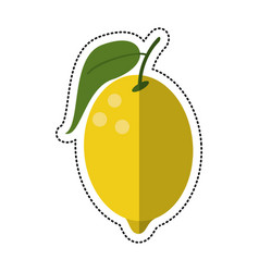 cartoon lemon citrus fruit icon vector image