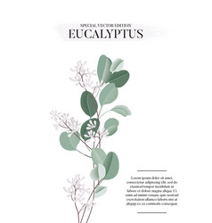 Eucalyptus floral watercolor art card template vector