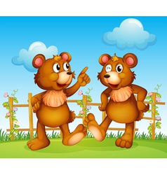 Happy faces of two bears vector