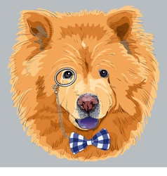 Hipster dog chow-chow vector