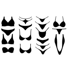 set of different bikini pieces vector image
