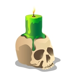 Human skull and a green burning candle on it vector image