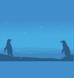 beauty landscape with penguin silhouette vector image