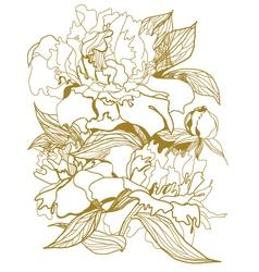 Drawing peonies bouquet vector