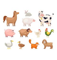 farm animals funny cartoon domestic birds rural vector image