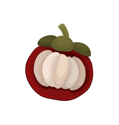 flat icon of half mangosteen ripe fruit of vector image