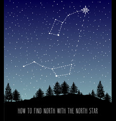 How to find north constellations vector
