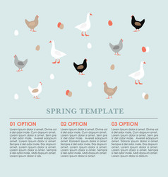 spring infographics background card with hens vector image
