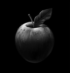 Apple realistic black-and-white artistic image vector