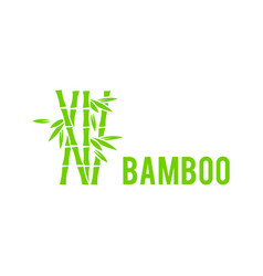 Bamboo tree icon on white background bamboo vector