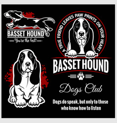 Basset hound - set for t-shirt logo and vector