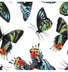 Beautiful watercolor colorful butterflies vector