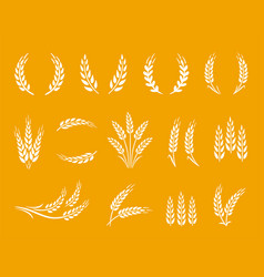 wheat spikes and wreaths food set on yellow vector image