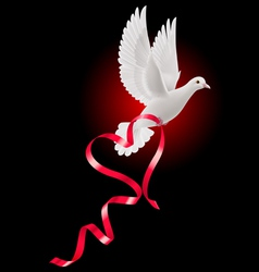 White dove with red ribbon vector image