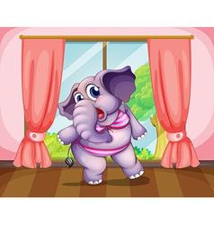 An elephant wearing a swimwear vector