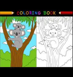 cartoon koala coloring book animals series vector image