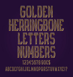 golden herringbone letters numbers dollar and vector image