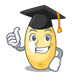 Graduation character brown cedar nut fruit on vector