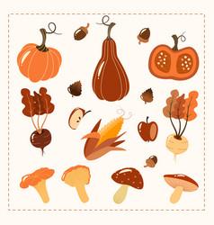 Hand drawn autumn set harvest elements vegetables vector