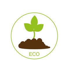 new born growing plant - ecological concept vector image