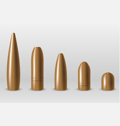 Set different type bullets isolated vector