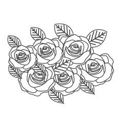 Silhouette sketch roses bouquet decorative design vector