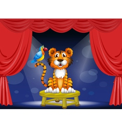 A tiger and a parrot in the circus vector image vector image