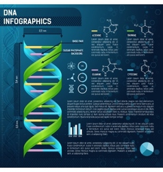 Dna for science infographics vector