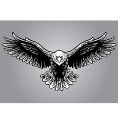 hand drawing style of eagle vector image vector image