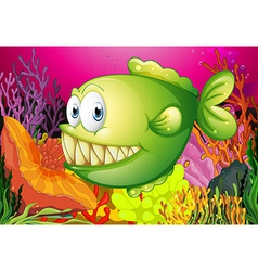 A green piranha vector