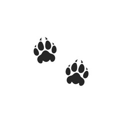 Lion paw print vector