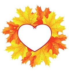 maple leaves in the frame in the shape of heart vector image