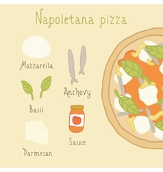 Napoletana pizza ingredients vector image