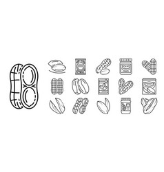 peanut icon set outline style vector image