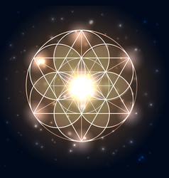 Sacred geometry abstract geometric shapes on a vector